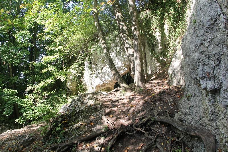 Jaskinia Nietoperzowa i Dolina Będkowska z dziećmi