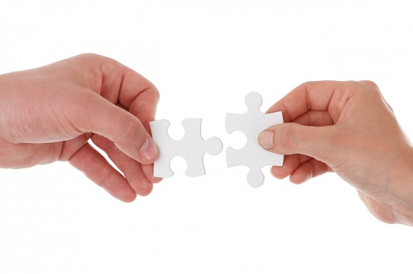 Sukces firmy to zasługa współpracy