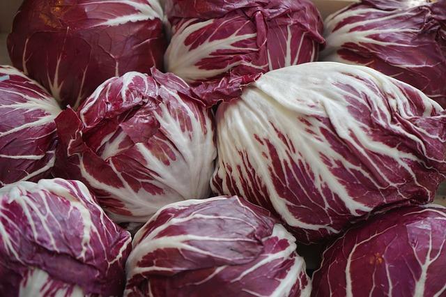 Cykoria – niedoceniane warzywo o świetnych właściwościach