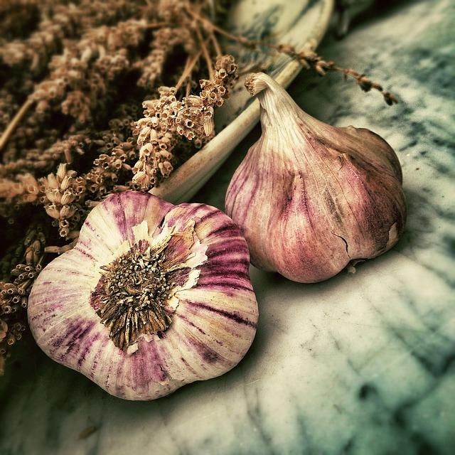 Czosnek – naturalny antybiotyk