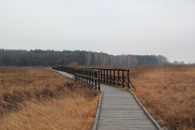 Poleski Park Narodowy - Ścieżka przyrodnicza Czachary z dziećmi