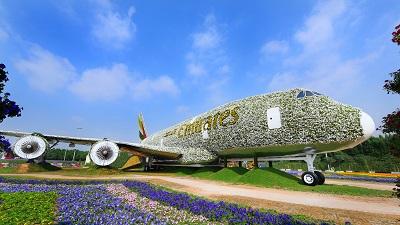 Największa na świecie instalacja kwiatowa w formie pełnowymiarowego samolotu A380 Emirates