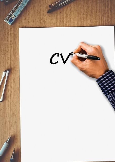 Idealne CV