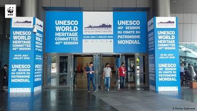 UNESCO: ministerstwo musi niezwłocznie przygotować plan zarządzania Puszczą