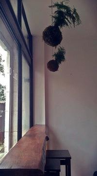 Raw Nest