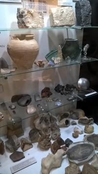 Kraków z dzieckiem - Muzeum Przyrodnicze