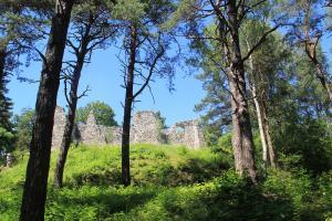 Ruiny zamku w Bydlinie z dziećmi