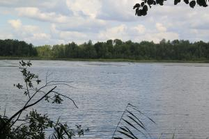 Poleski Park Narodowy - Ścieżka 'Perehod' z dziećmi