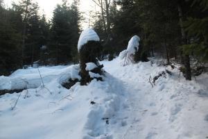 Zimowy Ćwilin  z dziećmi