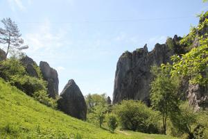 Dolina Bolechowicka z dziećmi