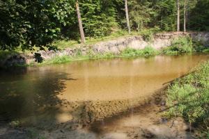 Szumy na Tanwi i wodospad Jeleń z dziećmi