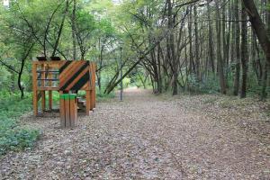 Kraków z dzieckiem - ścieżka edukacyjna Drugie Życie Drzew